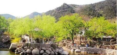 青岛百雀林生态观光园项目始建于1996年