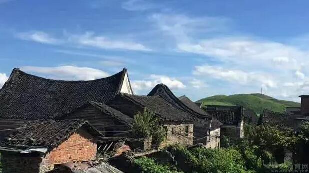 上海北大青鸟