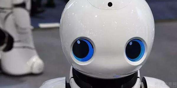 上海乐博趣机器人