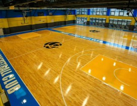 成都云图熊猫篮球俱乐部照片