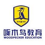杭州啄木鸟教育