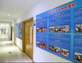 学校整体规模环境