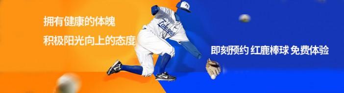 深圳红鹿棒球国际学院-优惠信息