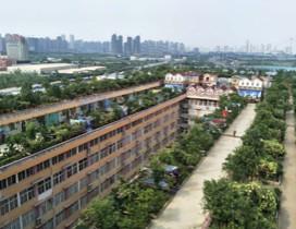 武汉麦高画室照片