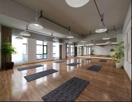 湖北铂凌瑜伽舞蹈学院照片