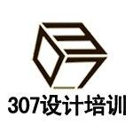 重庆307设计培训