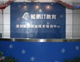 深圳鲲鹏IT教育照片