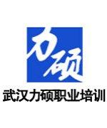 武汉力硕职业培训学校-邓教练