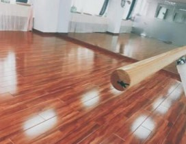 广州瑜曼伊人舞蹈培训照片