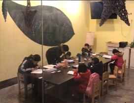 武汉佰树教育照片