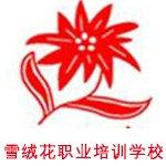 郑州雪绒花职业培训学校