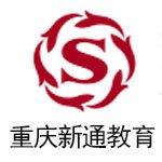 重庆新通教育