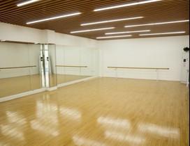 北京未来舞者照片