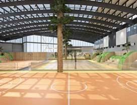 专业的篮球场地