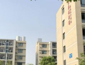杭州梦达动漫教育照片