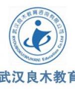 武汉良木教育-俞老师