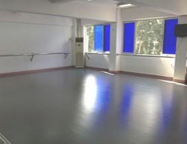 广州纯艺舞蹈学校照片