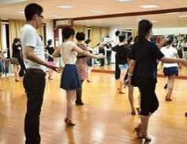 上海橄榄林文化艺术培训中心照片