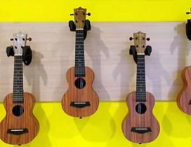山东童音国际音乐教育中心照片